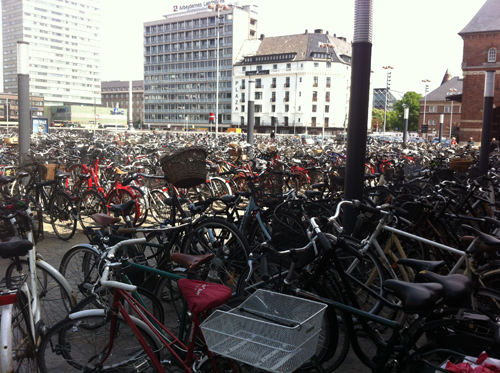 Copenhagen has a very active biking community.