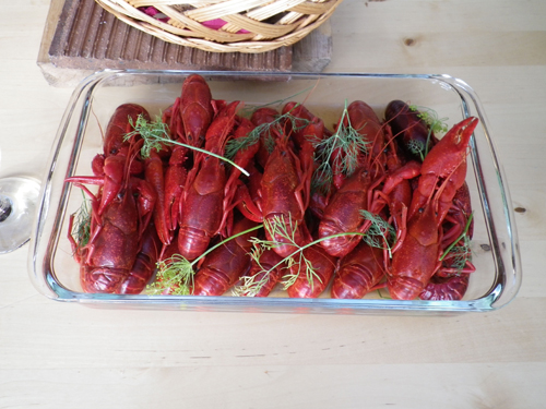 After the event Magnus taught us all about crawfish, a delicacy that is celebrated during the month of August in Sweden.